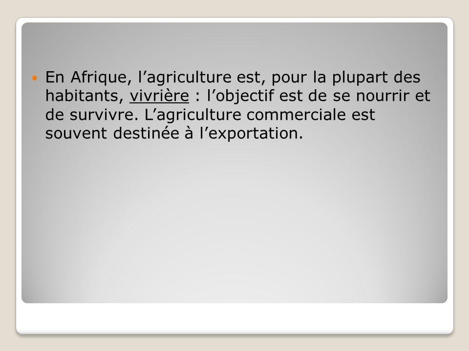 En Afrique, lagriculture est, pour la plupart des habitants, vivrière : lobjectif est de se nourrir et de survivre. Lagriculture commerciale est souve