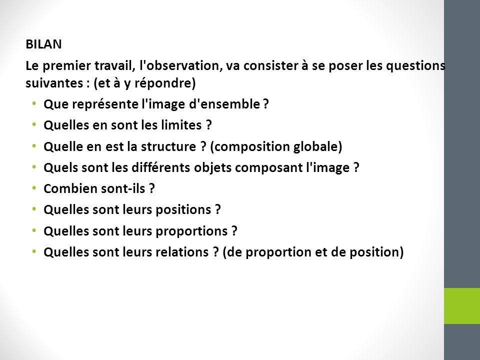 BILAN Le premier travail, l observation, va consister à se poser les questions suivantes : (et à y répondre) Que représente l image d ensemble .