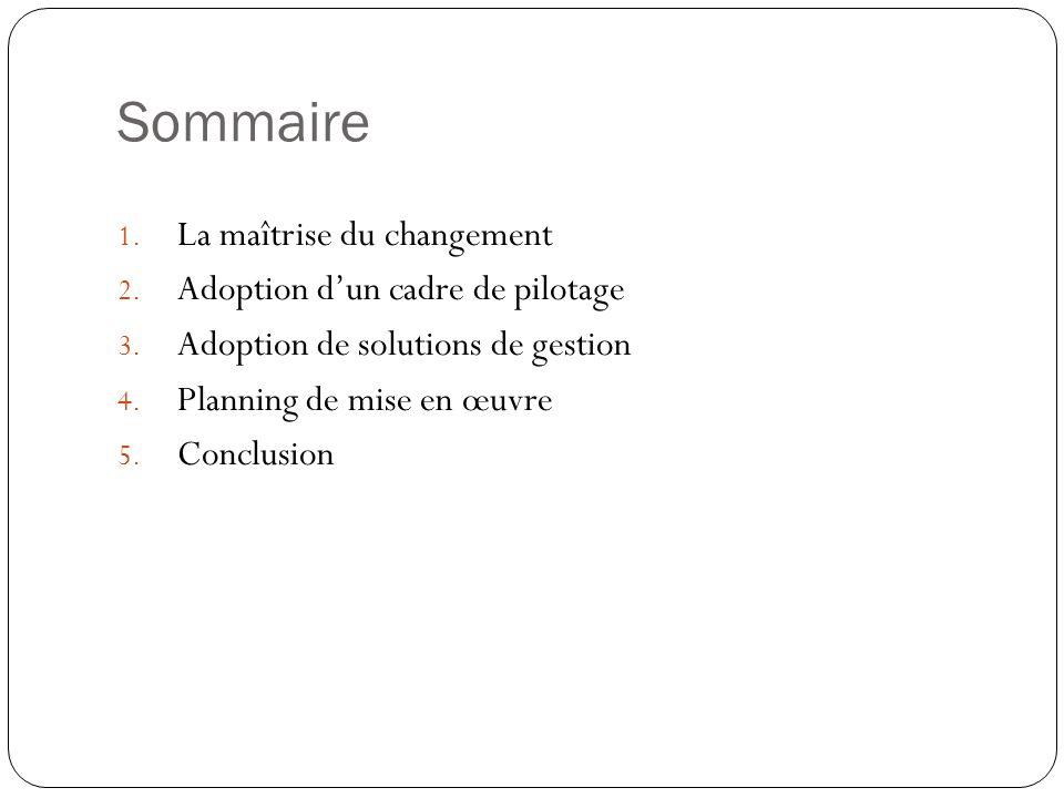 Sommaire 1. La maîtrise du changement 2. Adoption dun cadre de pilotage 3. Adoption de solutions de gestion 4. Planning de mise en œuvre 5. Conclusion