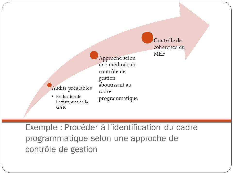 Exemple : Procéder à lidentification du cadre programmatique selon une approche de contrôle de gestion Audits préalables Evaluation de lexistant et de