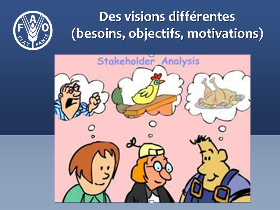 Des visions différentes (besoins, objectifs, motivations)