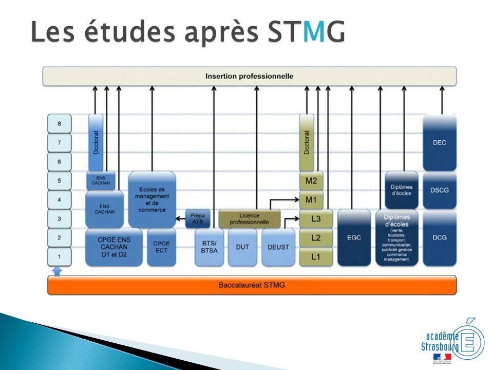 Les études après STMG