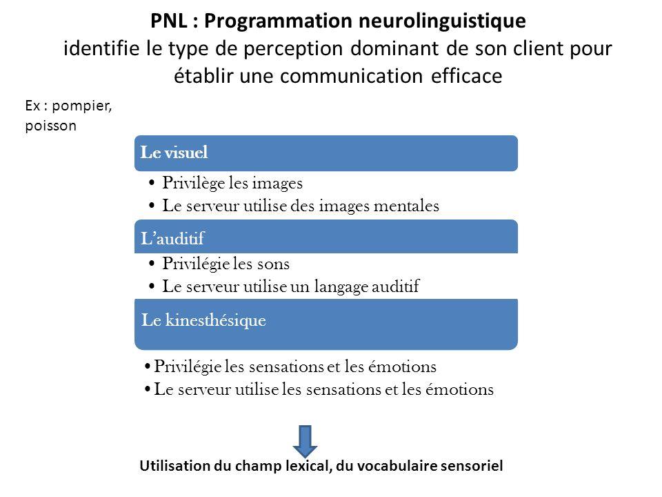 PNL : Programmation neurolinguistique identifie le type de perception dominant de son client pour établir une communication efficace Le visuel Privilè