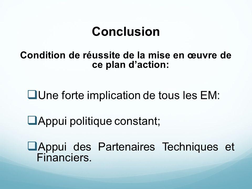 Conclusion Condition de réussite de la mise en œuvre de ce plan daction: Une forte implication de tous les EM: Appui politique constant; Appui des Par