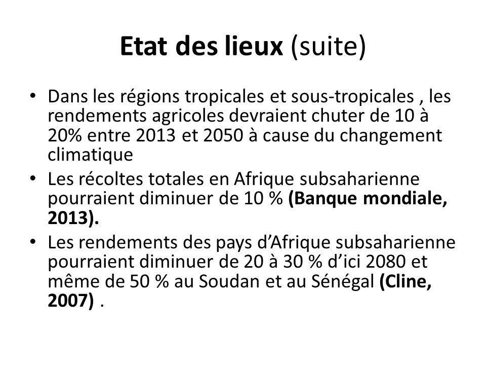 Etat des lieux (suite) Dans les régions tropicales et sous-tropicales, les rendements agricoles devraient chuter de 10 à 20% entre 2013 et 2050 à cause du changement climatique Les récoltes totales en Afrique subsaharienne pourraient diminuer de 10 % (Banque mondiale, 2013).