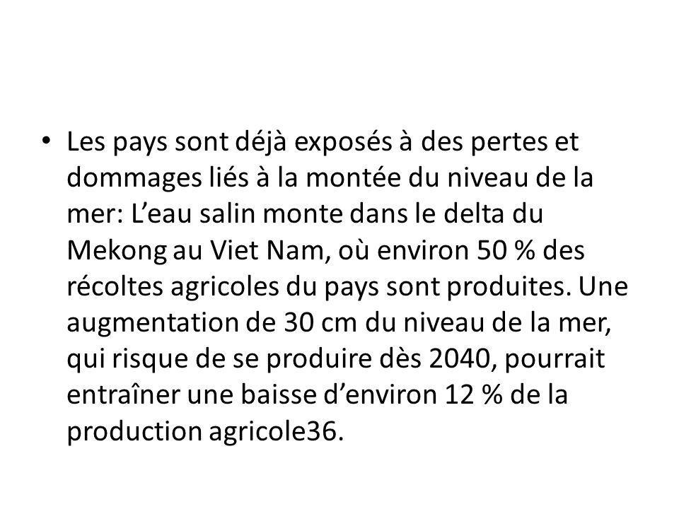 Les pays sont déjà exposés à des pertes et dommages liés à la montée du niveau de la mer: Leau salin monte dans le delta du Mekong au Viet Nam, où environ 50 % des récoltes agricoles du pays sont produites.