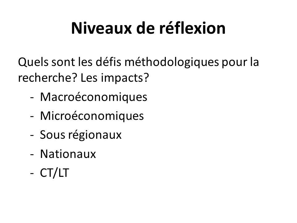 Niveaux de réflexion Quels sont les défis méthodologiques pour la recherche? Les impacts? - Macroéconomiques - Microéconomiques - Sous régionaux - Nat