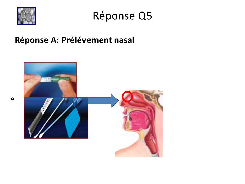 Réponse Q5 Réponse A: Prélévement nasal A
