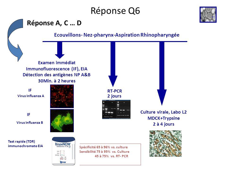 Réponse Q6 Réponse A, C … D Virus Influenza B Virus Influenza A Ecouvillons- Nez-pharynx-Aspiration Rhinopharyngée Examen immédiat Immunofluorescence