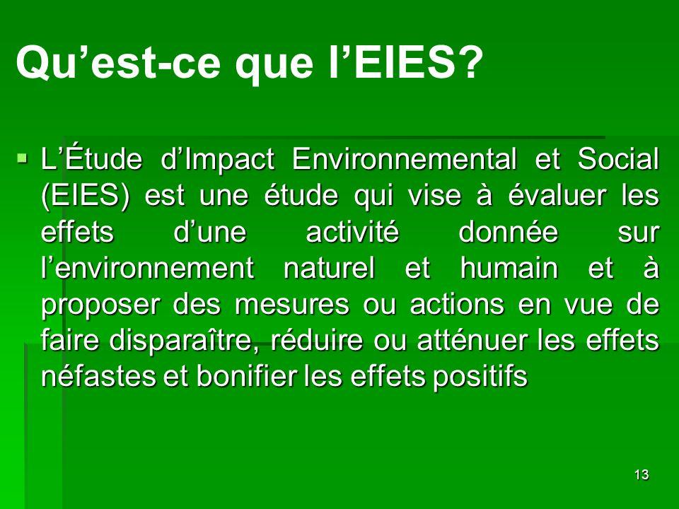 13 Quest-ce que lEIES? LÉtude dImpact Environnemental et Social (EIES) est une étude qui vise à évaluer les effets dune activité donnée sur lenvironne