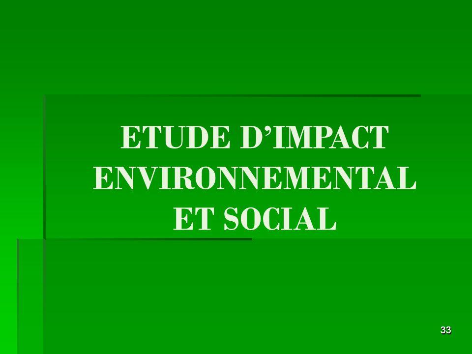 3333 ETUDE DIMPACT ENVIRONNEMENTAL ET SOCIAL