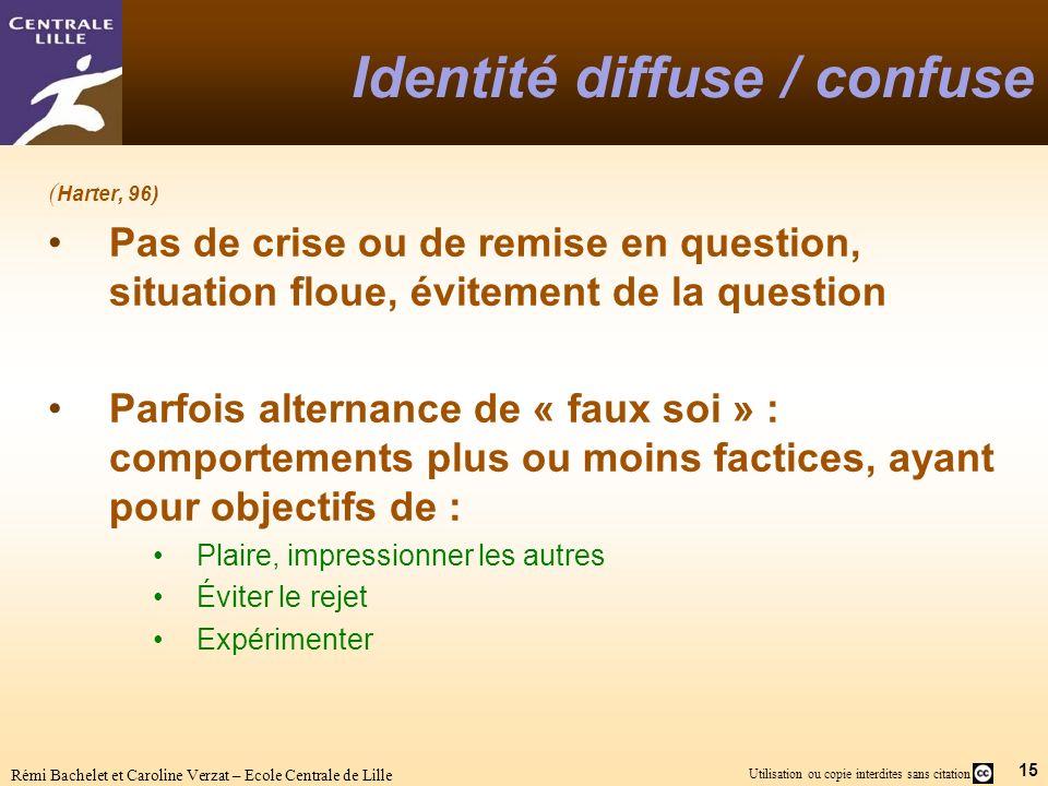 15 Utilisation ou copie interdites sans citation Rémi Bachelet et Caroline Verzat – Ecole Centrale de Lille Identité diffuse / confuse ( Harter, 96) P