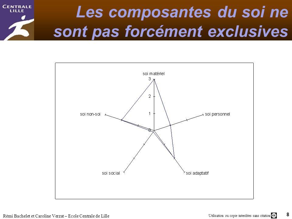8 Utilisation ou copie interdites sans citation Rémi Bachelet et Caroline Verzat – Ecole Centrale de Lille Les composantes du soi ne sont pas forcémen
