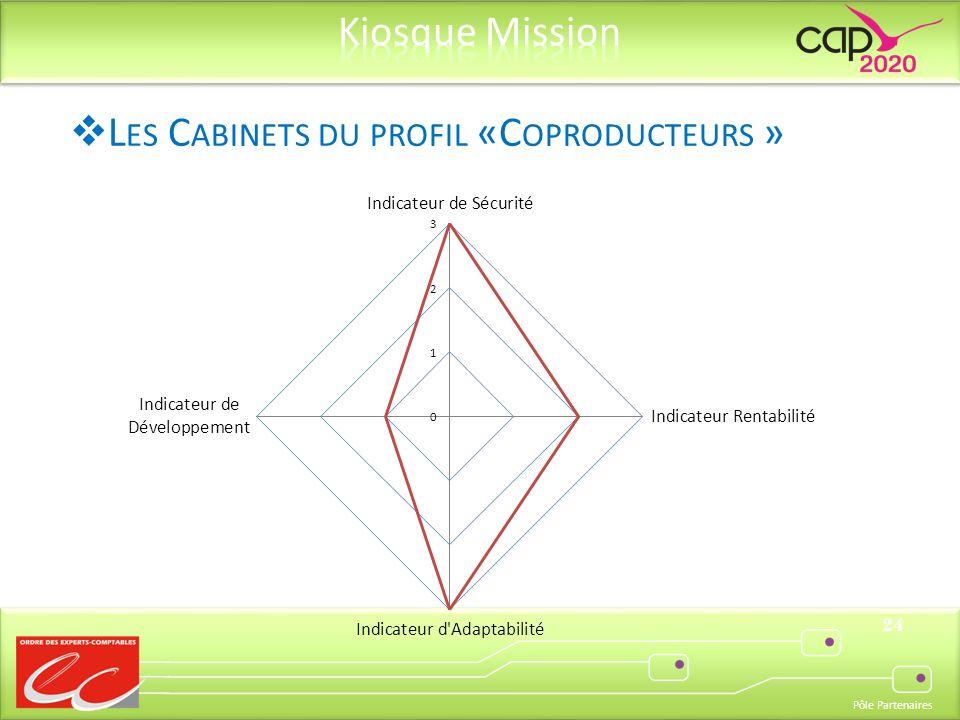 Pôle Partenaires 24 L ES C ABINETS DU PROFIL «C OPRODUCTEURS »