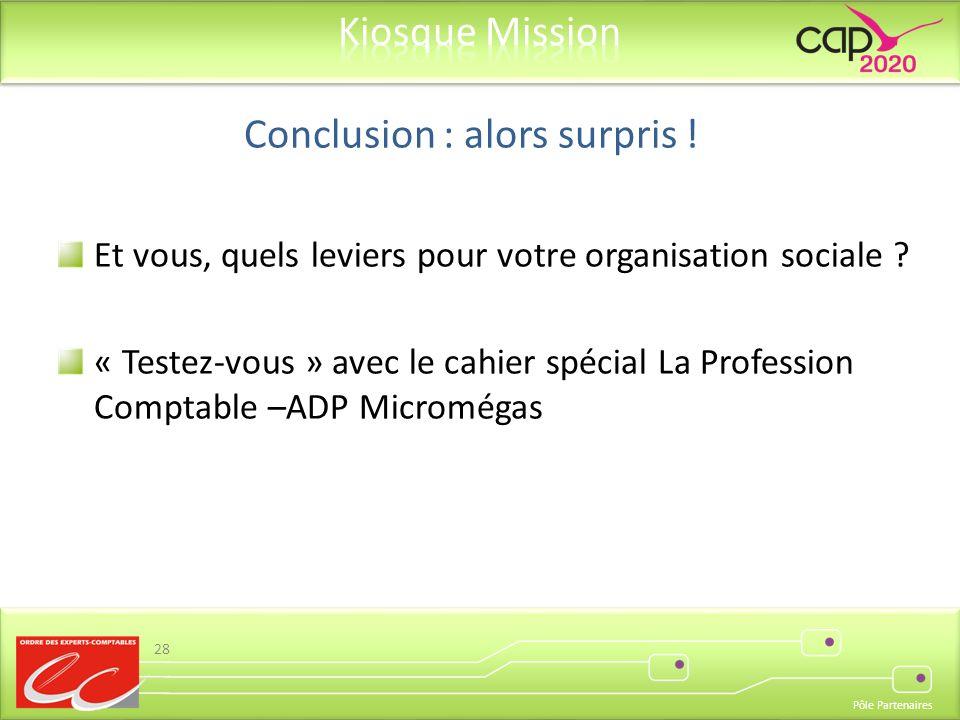 Pôle Partenaires Et vous, quels leviers pour votre organisation sociale ? « Testez-vous » avec le cahier spécial La Profession Comptable –ADP Micromég