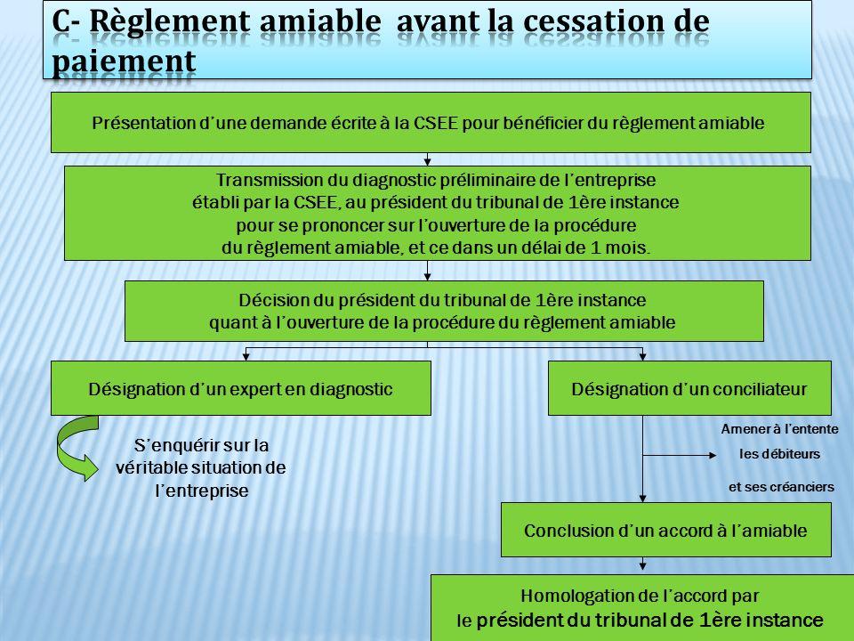 27 Présentation dune demande écrite à la CSEE pour bénéficier du règlement amiable Transmission du diagnostic préliminaire de lentreprise établi par l