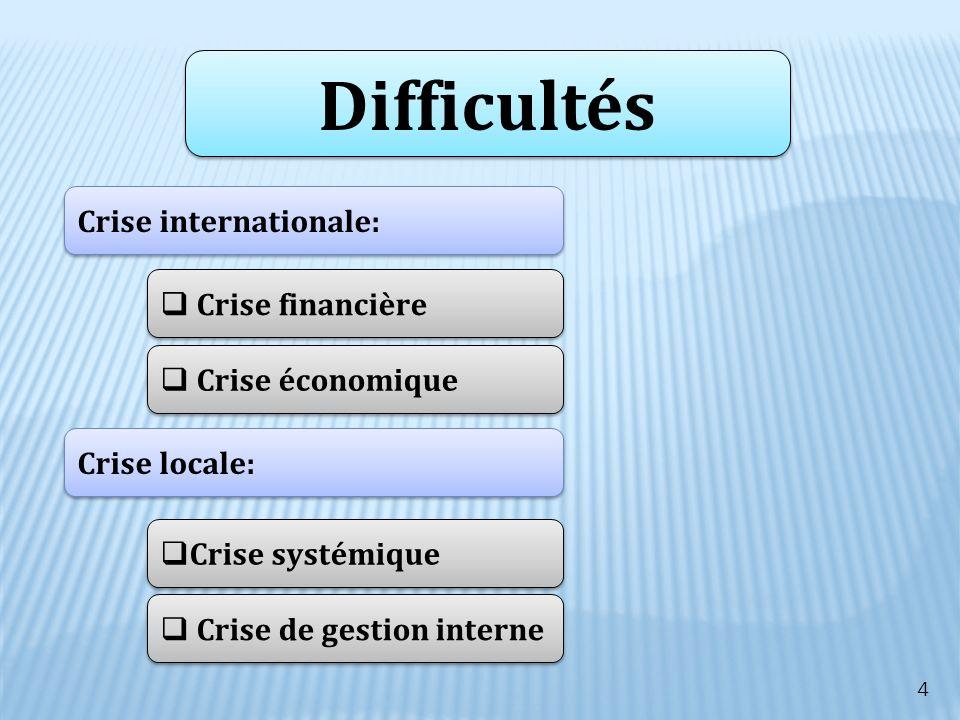 Difficultés Crise internationale: Crise financière Crise économique Crise locale: Crise systémique Crise de gestion interne 4