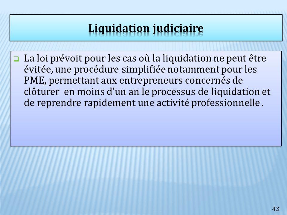 La loi prévoit pour les cas où la liquidation ne peut être évitée, une procédure simplifiée notamment pour les PME, permettant aux entrepreneurs conce