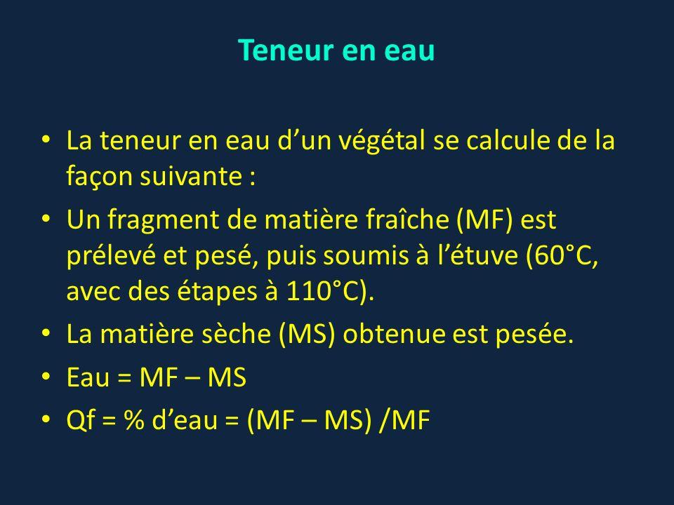 La teneur en eau dun végétal se calcule de la façon suivante : Un fragment de matière fraîche (MF) est prélevé et pesé, puis soumis à létuve (60°C, av