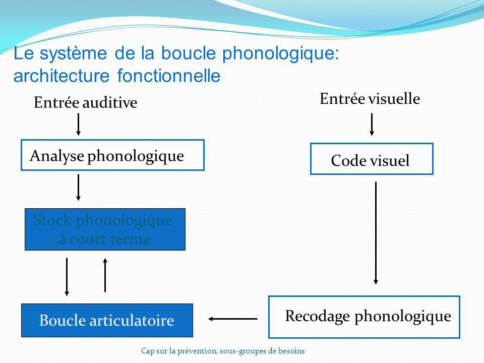 Le système de la boucle phonologique: architecture fonctionnelle Entrée auditive Analyse phonologique Stock phonologique à court terme Boucle articula