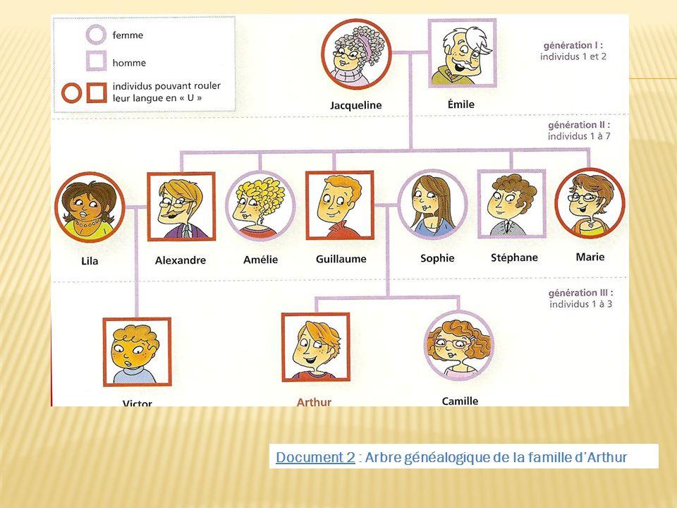 Document 2 : Arbre généalogique de la famille dArthur