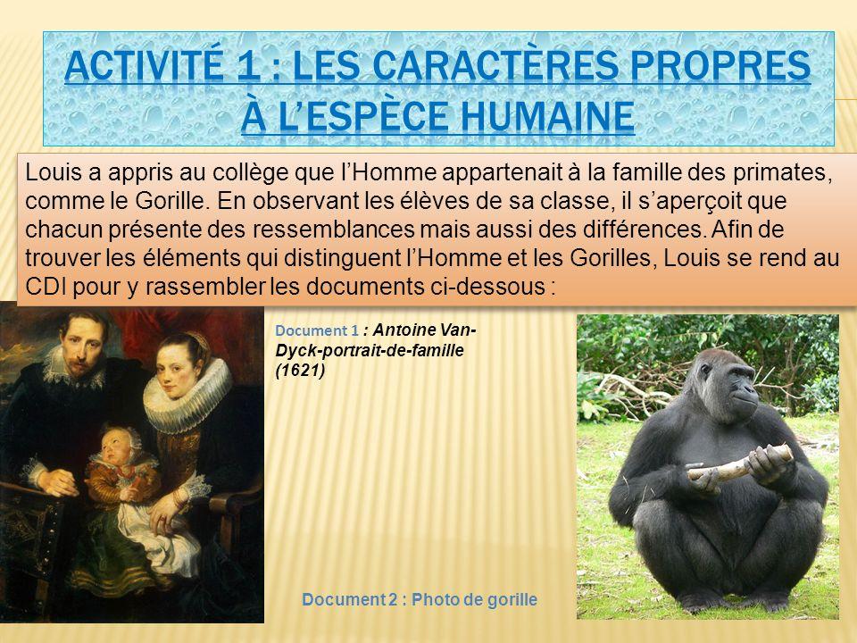 Louis a appris au collège que lHomme appartenait à la famille des primates, comme le Gorille.