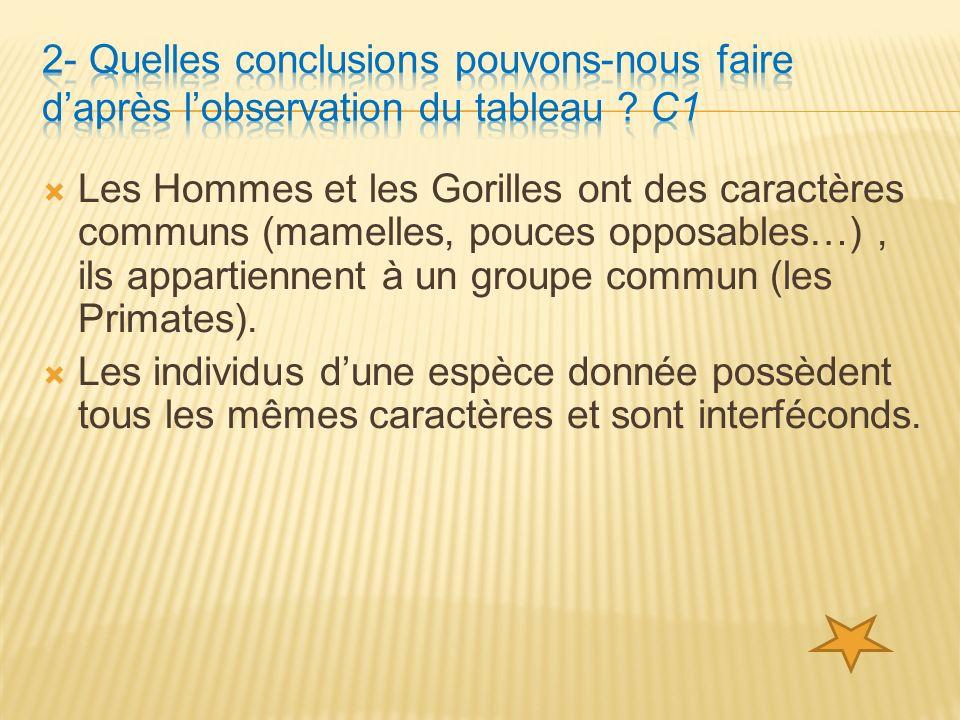 Les Hommes et les Gorilles ont des caractères communs (mamelles, pouces opposables…), ils appartiennent à un groupe commun (les Primates).