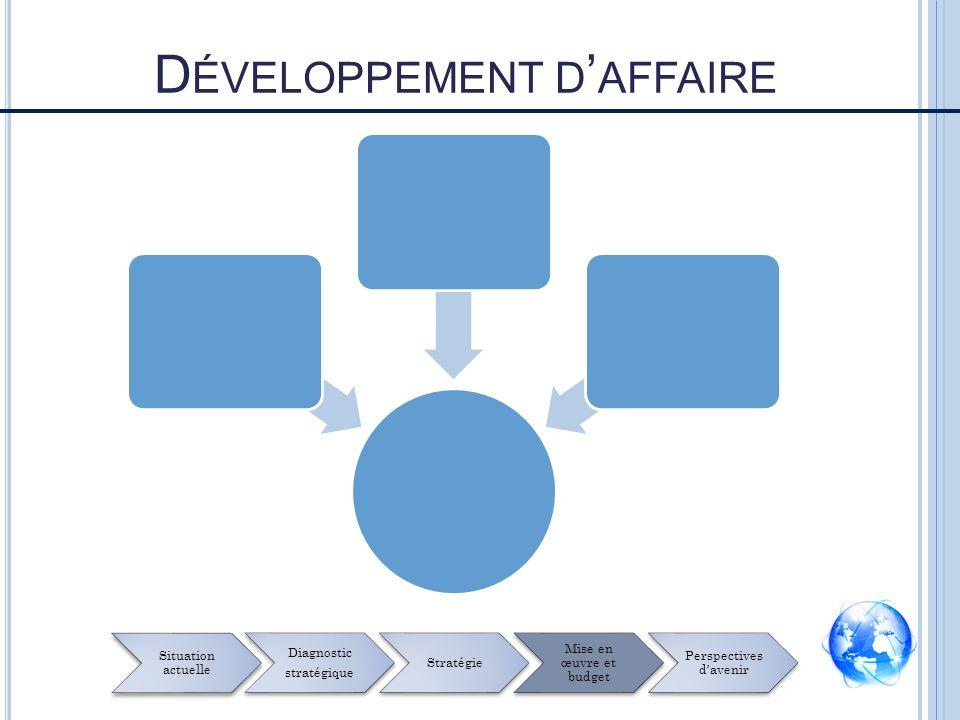 D ÉVELOPPEMENT D AFFAIRE Situation actuelle Diagnostic stratégique Stratégie Mise en œuvre et budget Perspectives davenir