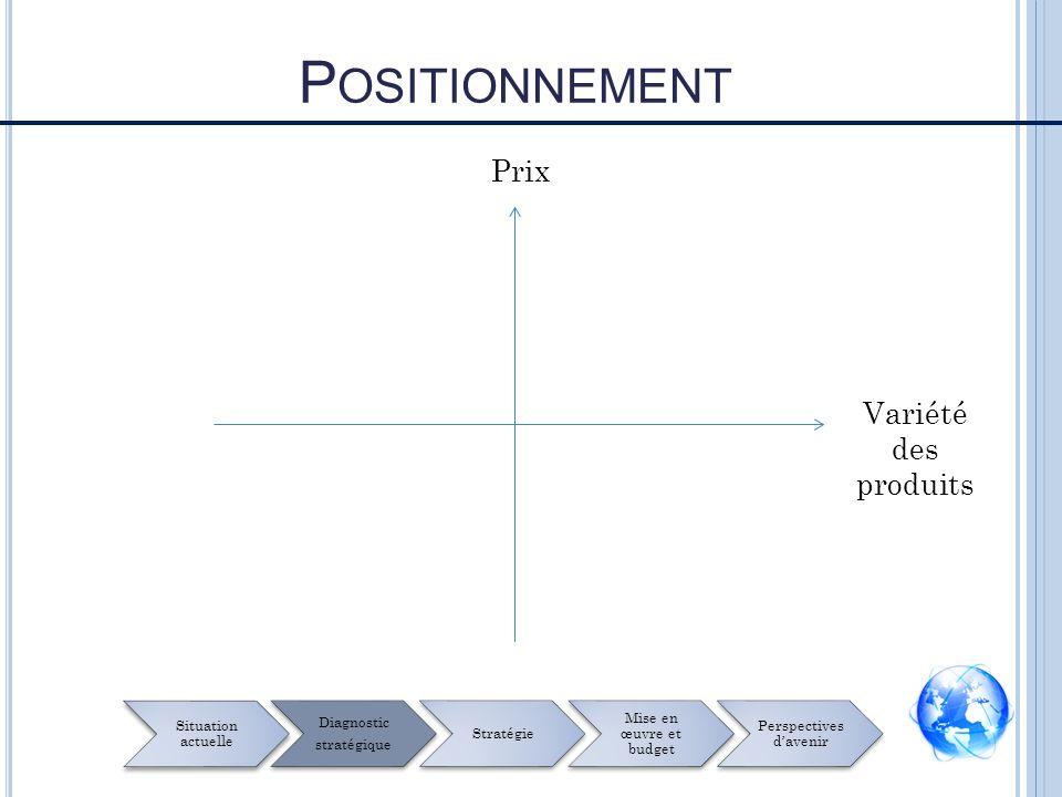 Prix Variété des produits P OSITIONNEMENT Situation actuelle Diagnostic stratégique Stratégie Mise en œuvre et budget Perspectives davenir