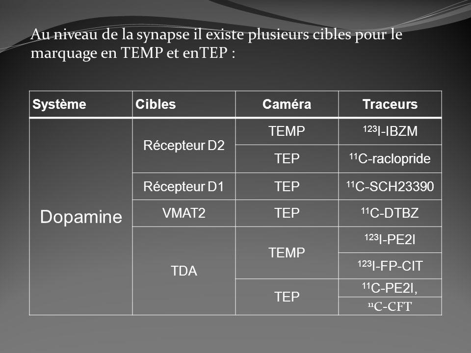Au niveau de la synapse il existe plusieurs cibles pour le marquage en TEMP et enTEP : SystèmeCiblesCaméraTraceurs Dopamine Récepteur D2 TEMP 123 I-IB