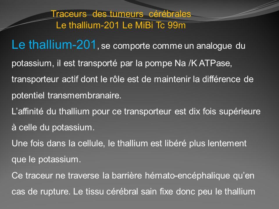 Traceurs des tumeurs cérébrales Le thallium-201 Le MiBi Tc 99m Le thallium-201, se comporte comme un analogue du potassium, il est transporté par la p
