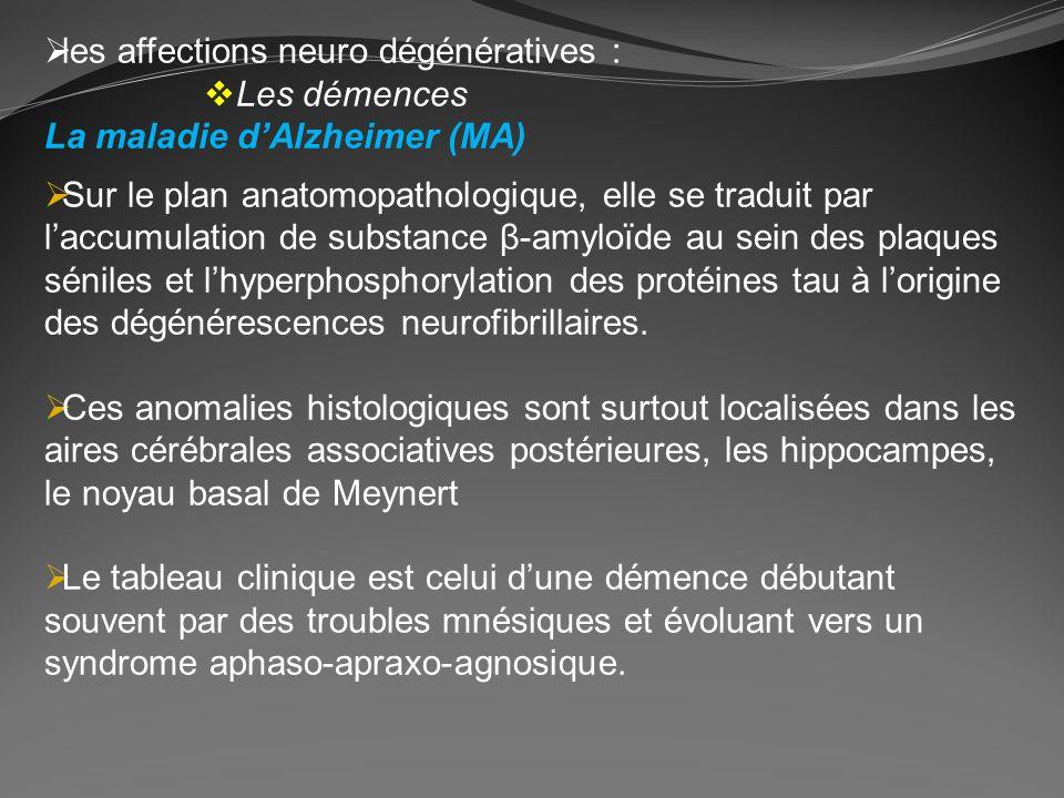 les affections neuro dégénératives : Les démences La maladie dAlzheimer (MA) Sur le plan anatomopathologique, elle se traduit par laccumulation de sub