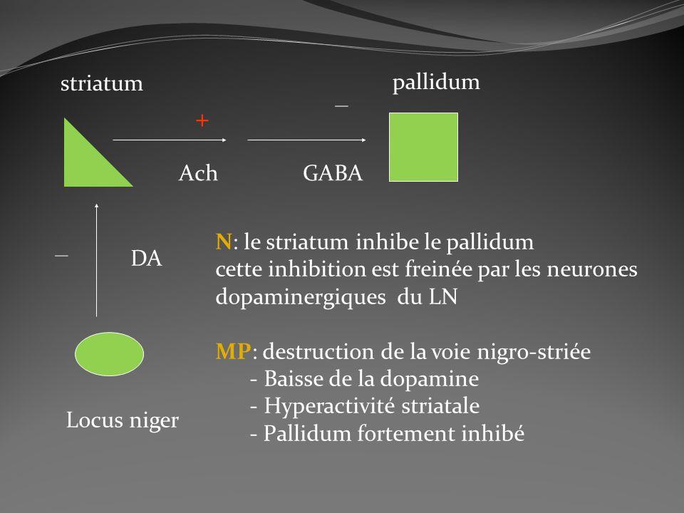 striatum pallidum Locus niger DA AchGABA + _ _ N: le striatum inhibe le pallidum cette inhibition est freinée par les neurones dopaminergiques du LN M