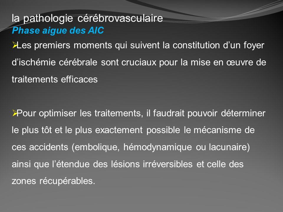 la pathologie cérébrovasculaire Phase aigue des AIC Les premiers moments qui suivent la constitution dun foyer dischémie cérébrale sont cruciaux pour