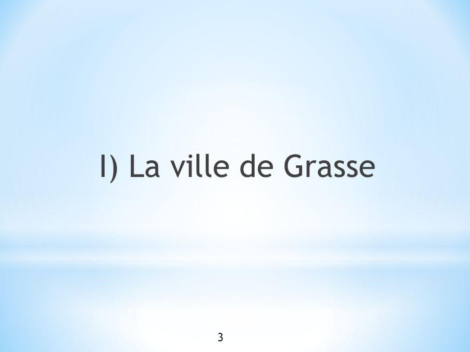 Grasse est une commune située dans les Alpes Maritimes (06), à 12 km au Nord de la Ville de Cannes.