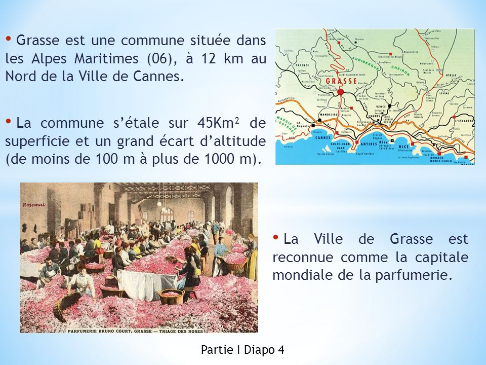 Grasse est une commune située dans les Alpes Maritimes (06), à 12 km au Nord de la Ville de Cannes. La commune sétale sur 45Km² de superficie et un gr