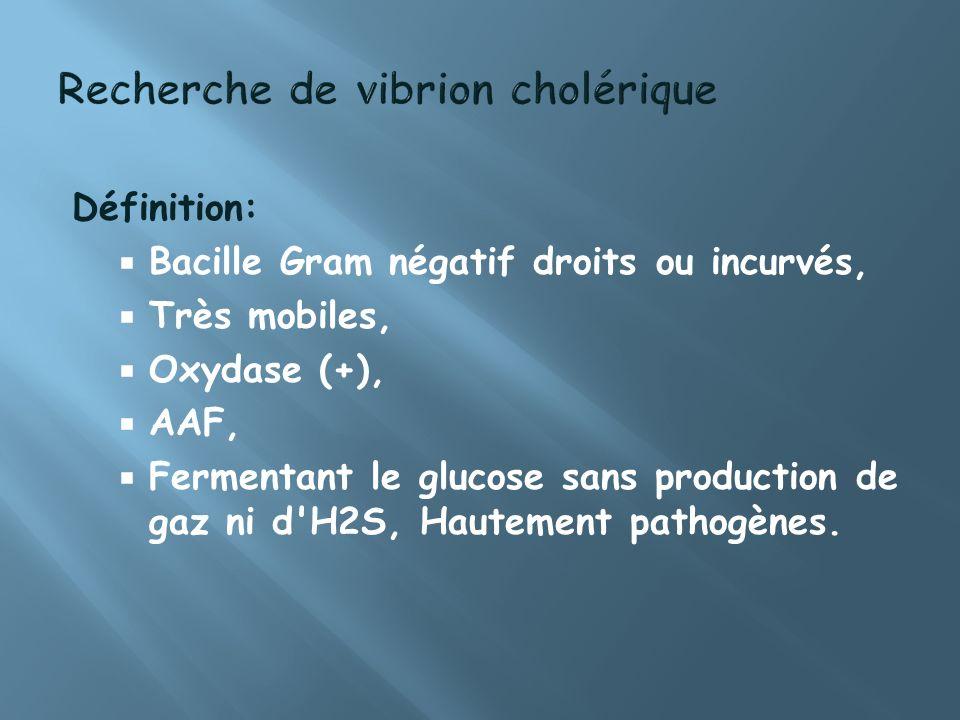 Définition: Bacille Gram négatif droits ou incurvés, Très mobiles, Oxydase (+), AAF, Fermentant le glucose sans production de gaz ni d'H2S, Hautement