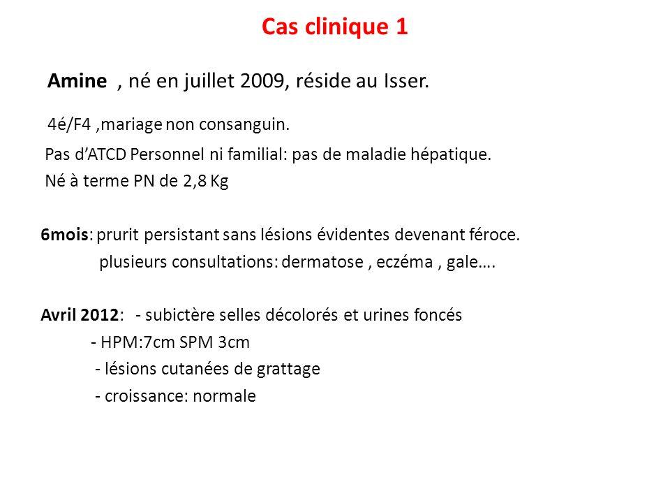 Cas clinique 1 Amine, né en juillet 2009, réside au Isser. 4é/F4,mariage non consanguin. Pas dATCD Personnel ni familial: pas de maladie hépatique. Né