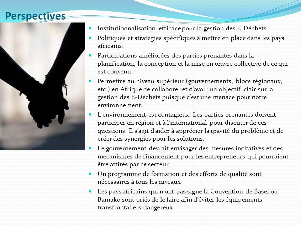 Perspectives Institutionnalisation efficace pour la gestion des E-Déchets.