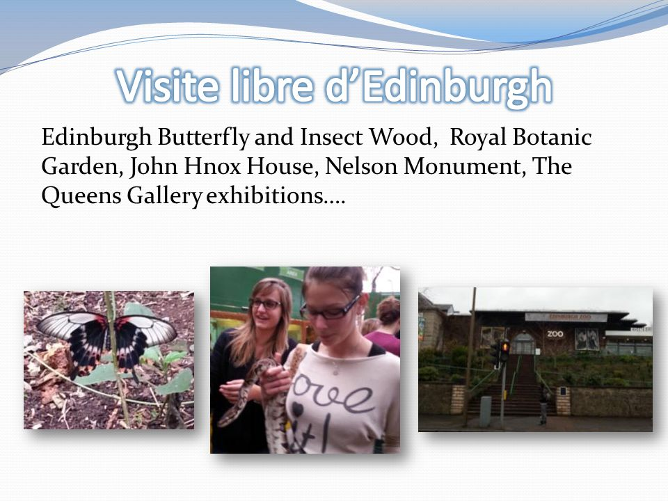 Edinburgh Butterfly and Insect Wood, Royal Botanic Garden, John Hnox House, Nelson Monument, The Queens Gallery exhibitions….