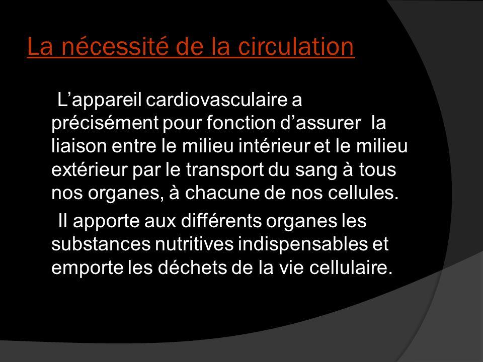 III) L activité mécanique cardiaque