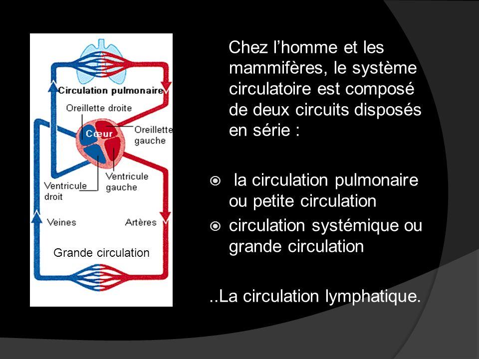 Il existe : -Un système à haute pression en amont (avant) des réseaux capillaires.