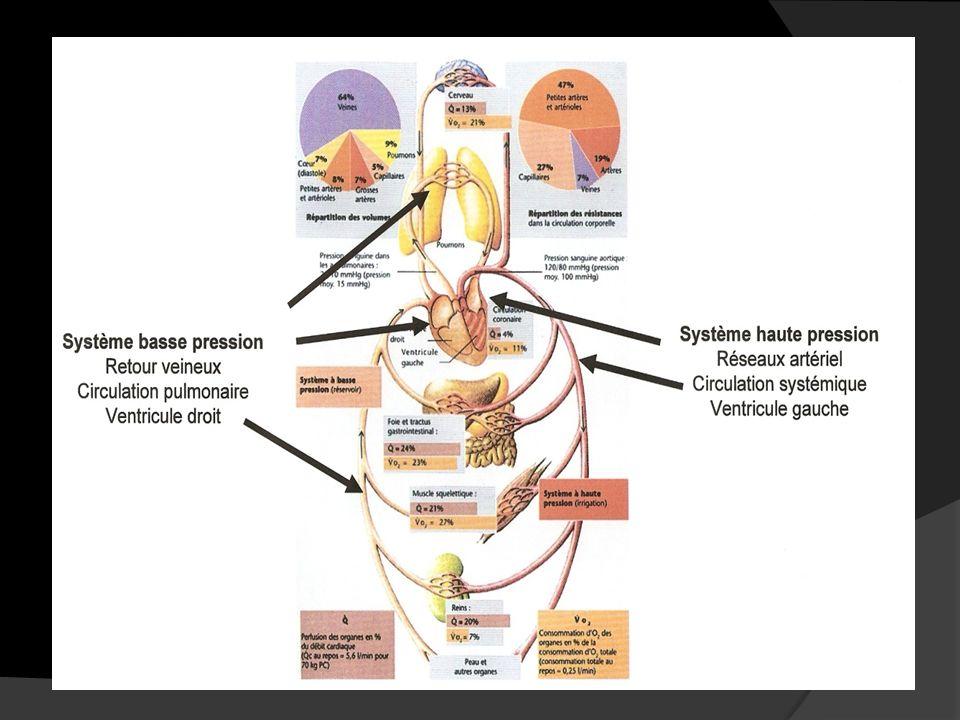 2) Le débit cardiaque et les facteurs qui linfluencent au niveau du système circulatoire.