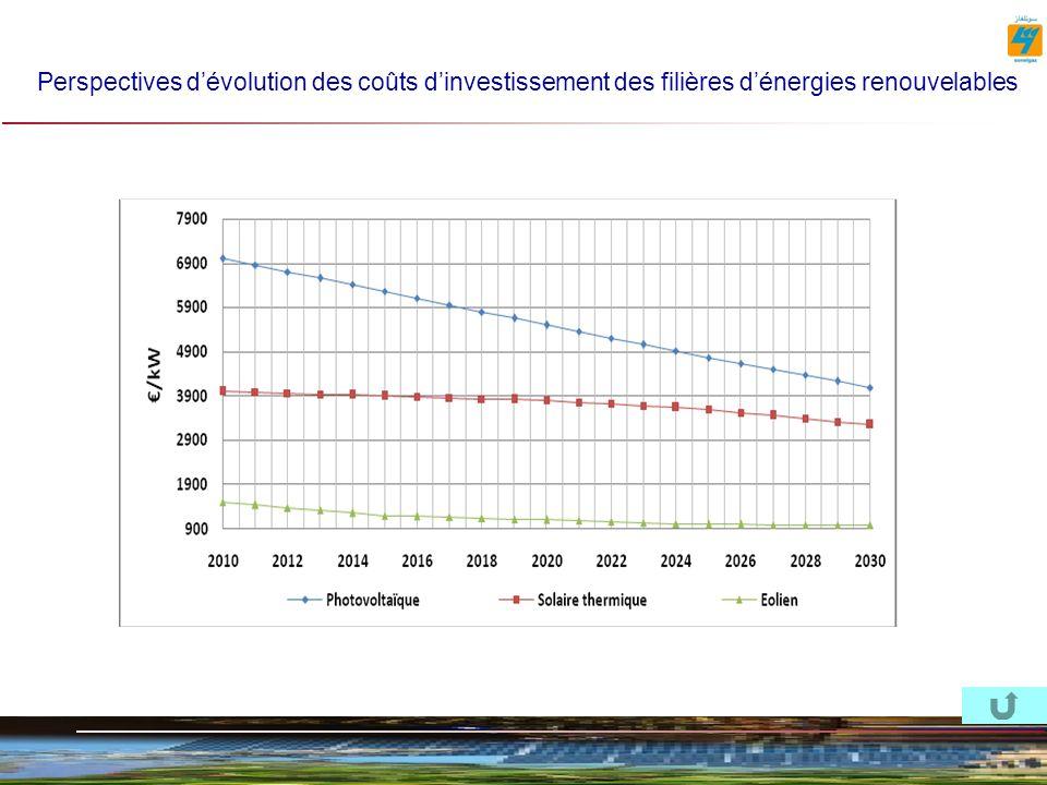 Perspectives dévolution des coûts dinvestissement des filières dénergies renouvelables