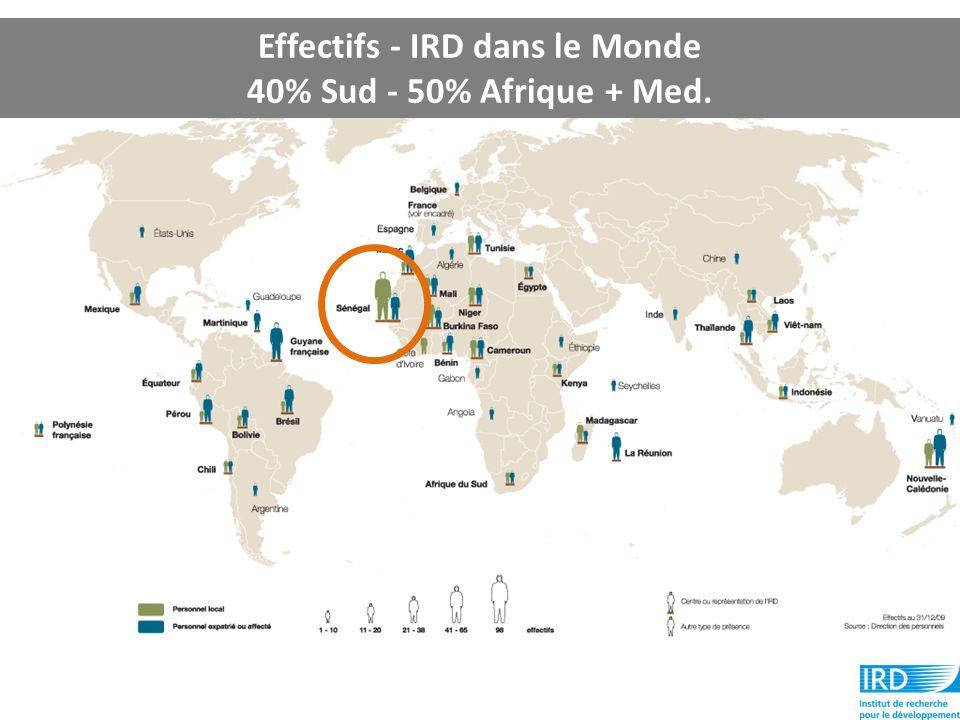 Effectifs - IRD dans le Monde 40% Sud - 50% Afrique + Med.