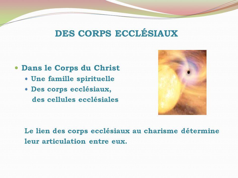 DES CORPS ECCLÉSIAUX Dans le Corps du Christ Une famille spirituelle Des corps ecclésiaux, des cellules ecclésiales Le lien des corps ecclésiaux au ch