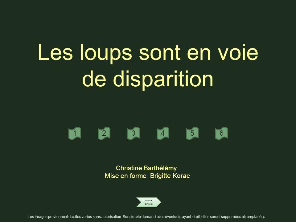 Les loups sont en voie de disparition mode emploi mode emploi 123456 Christine Barthélémy Mise en forme Brigitte Korac Les images proviennent de sites variés sans autorisation.