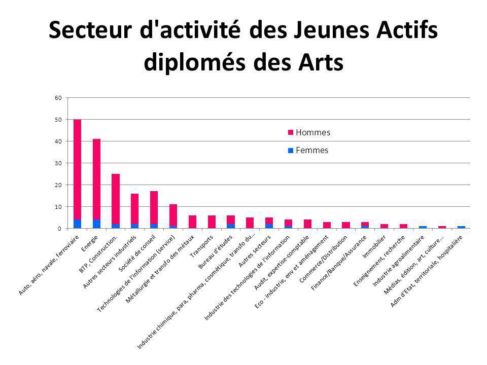 Secteur d'activité des Jeunes Actifs diplomés des Arts