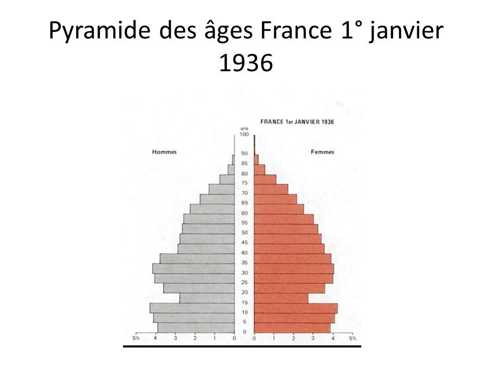 Pyramide des âges France 1° janvier 1936