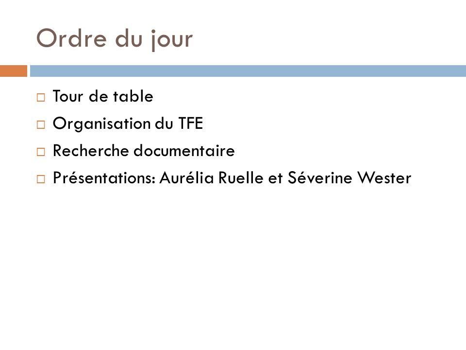 Lien hypothèses/outils Anaïs Demol TFE défendu en septembre 2011